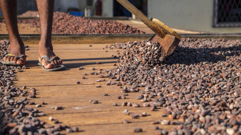 En Pacari todos los procesos se realizan de manera artesanal.