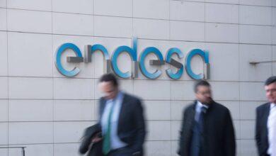 """Endesa tranquiliza a grandes inversores extranjeros: """"Podemos no nos va a expropiar"""""""