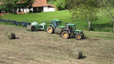 La falta de mano de obra obliga a triplicar las horas extra en la agricultura