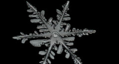 Detalle de un cristal de nieve