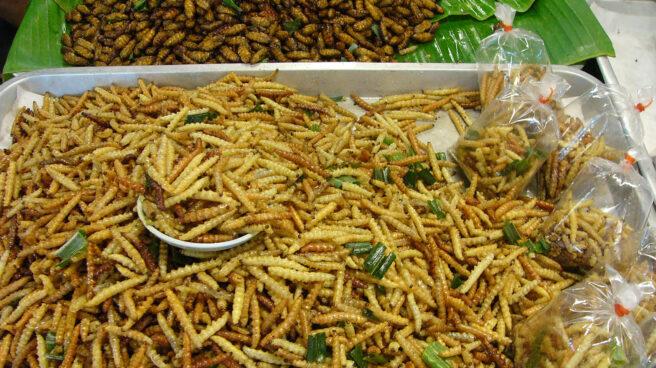 Insectos cocinados y preparados para su ingesta en un mercado chino