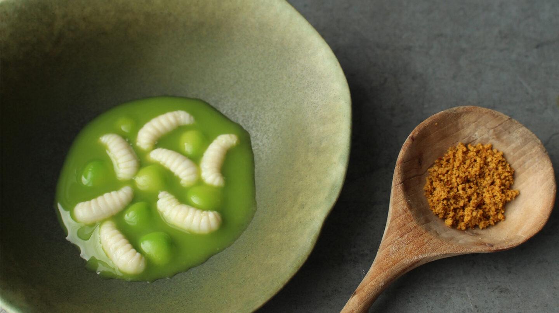 Sopa de guisantes con larvas de abeja, una receta del Nordic Food Lab.