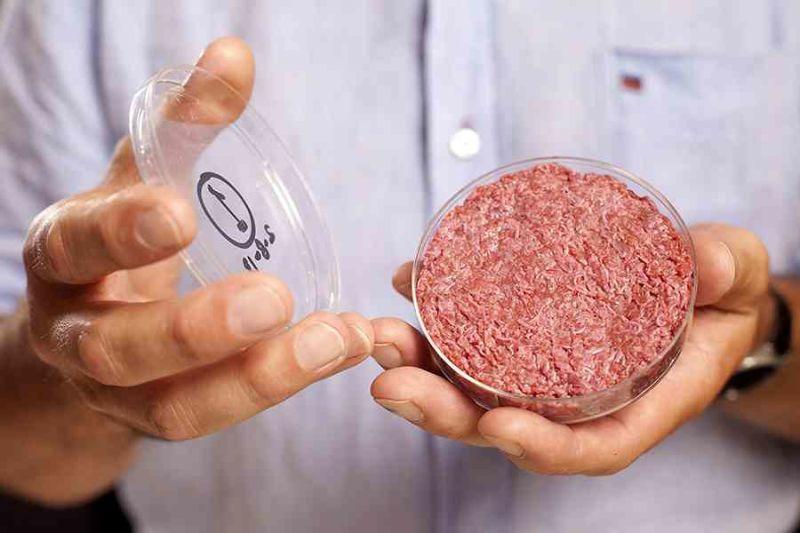 Resultado de imagen para carne de laboratorio