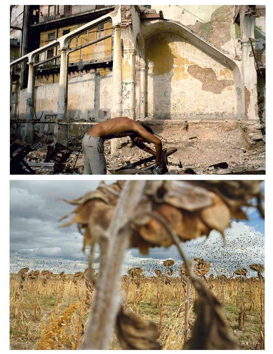 Foto de la Habana (arriba) de Alex Webb e imagen tomada en Dakota del Sur por Rebecca Norris.
