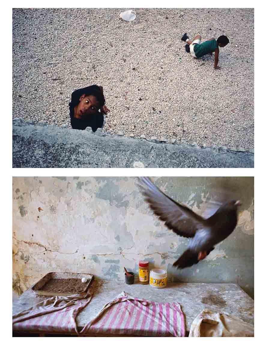 Fotografías tomadas en La Habana. Alex Webb fotografía personas (arriba) y Rebecca Norris animales (abajo)