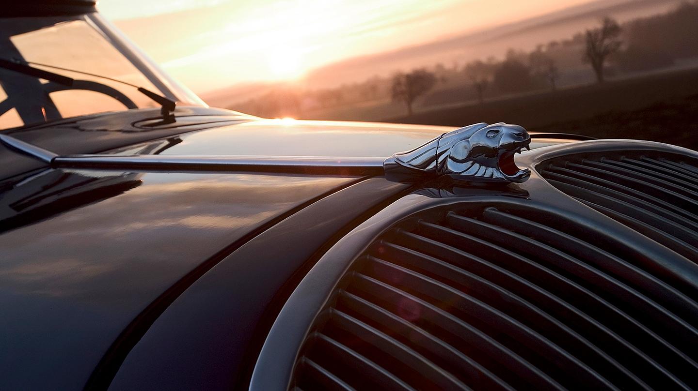 Calandra del Peugeot 402 con el león emblema de la marca