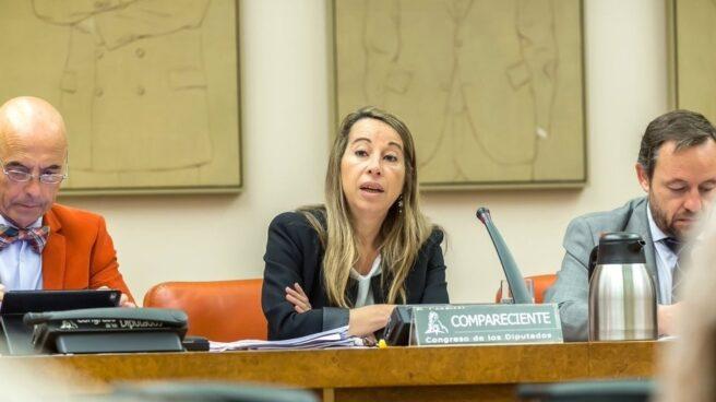 La secretaria de Estado de la Función Pública, Elena Collado, en el Congreso de los Diputados.