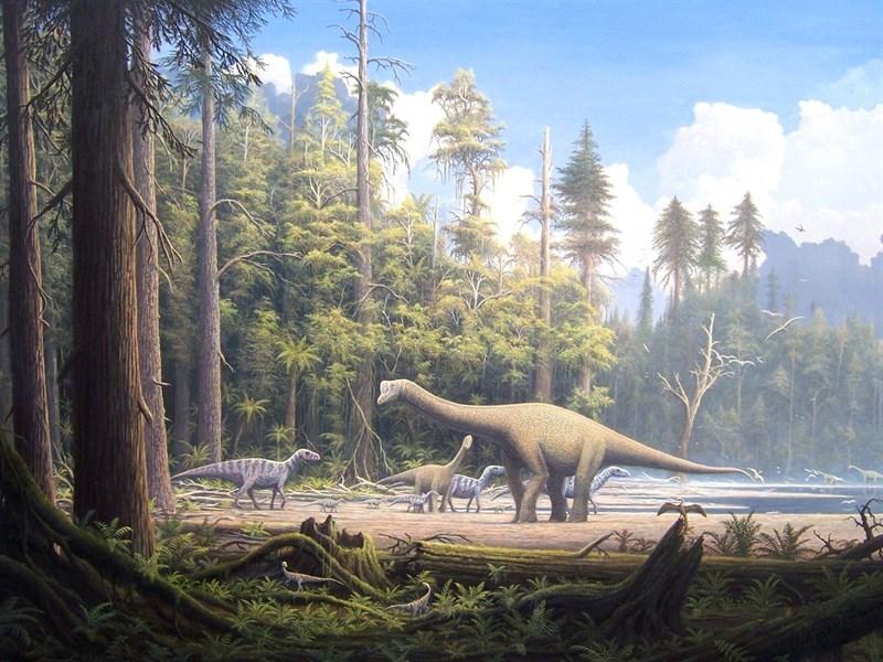 Descubierto El Primo Mas Antiguo Del Dinosaurio Parecido A Un Gran Cocodrilo Superorden de vertebrados saurópsidos que dominaron la era mesozoica. dinosaurio parecido a un gran cocodrilo