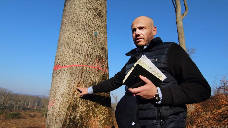 Frédéric Canadell, explotador forestal autorizado, señala el sello con el que marcan los robles que son autorizados para la tala. (Foto: Rafael Ordóñez)