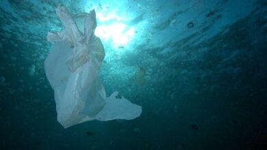 Una gran corriente marina llena el Ártico de plásticos
