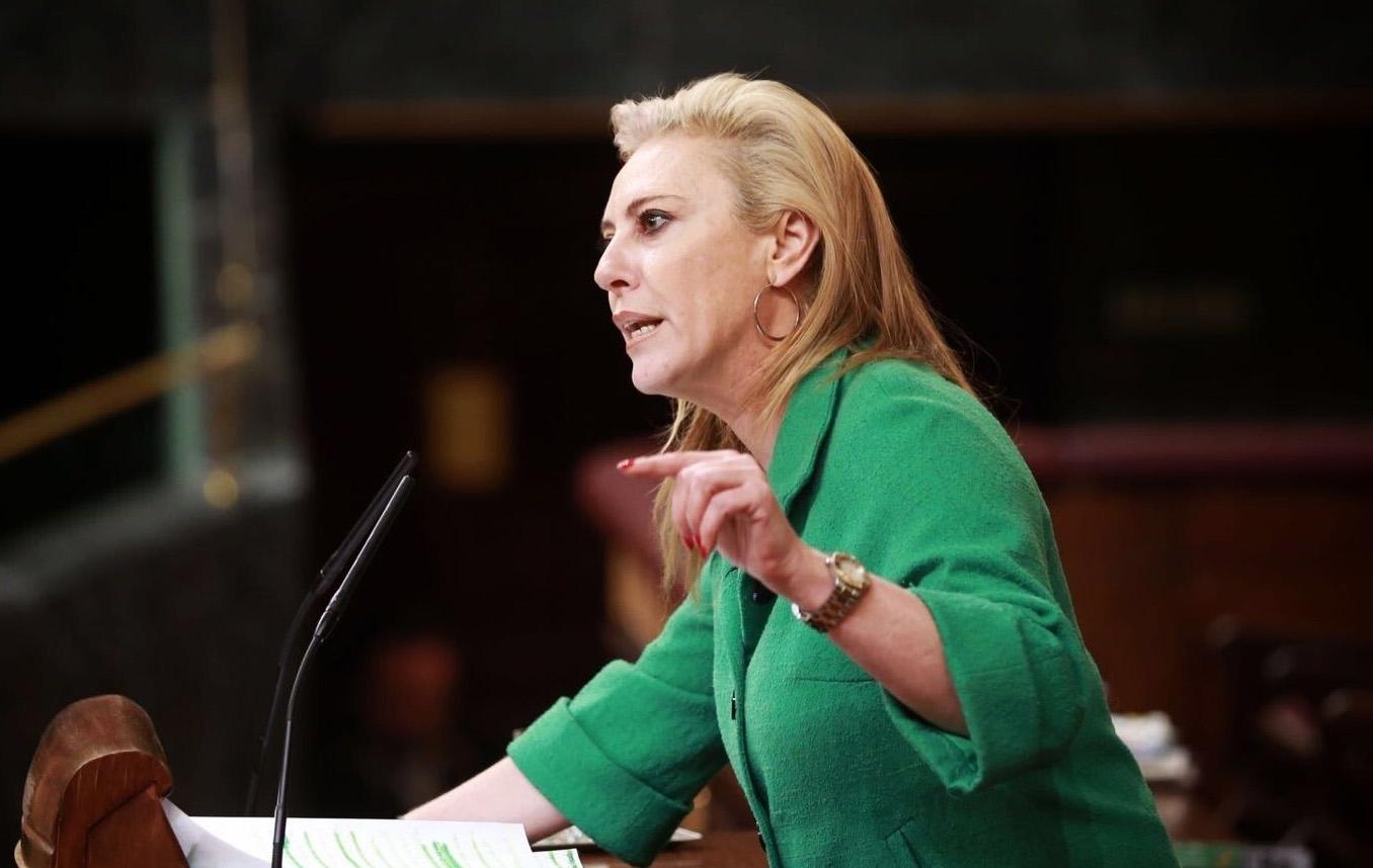 La portavoz del PP en el Pacto de Toledo, Carolina España, durante el debate sobre pensiones.