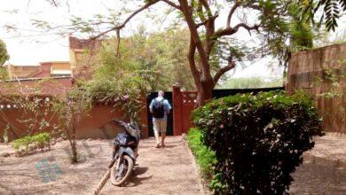 El 'prófugo de los ERE' se dedicaba al cannabis medicinal en su escondite de África