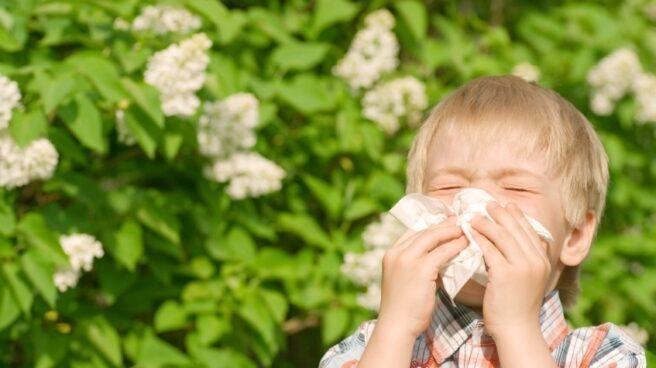 Un niño con síntomas de alergia.