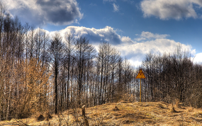 Red Forest en Chernóbil