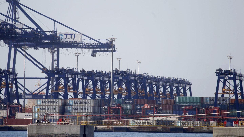 Las grúas del puerto de Algeciras (Cádiz) durante la primera jornada de huelga de los estibadores.