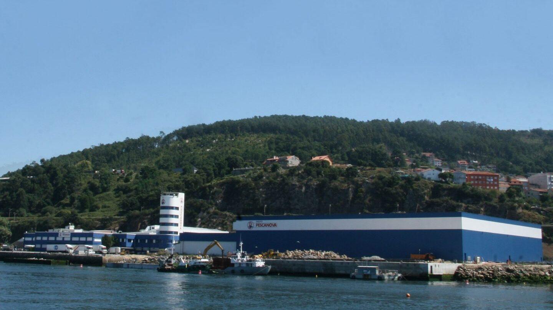 Instalaciones de Pescanova en Chapela (Galicia).