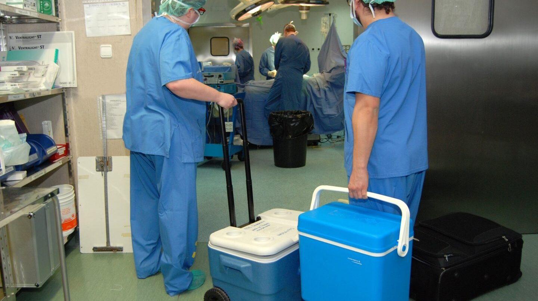 Los trasplantes que más han aumentado son los pulmonares (+25%), hepáticos (+17%) y los renales (+9,3%)