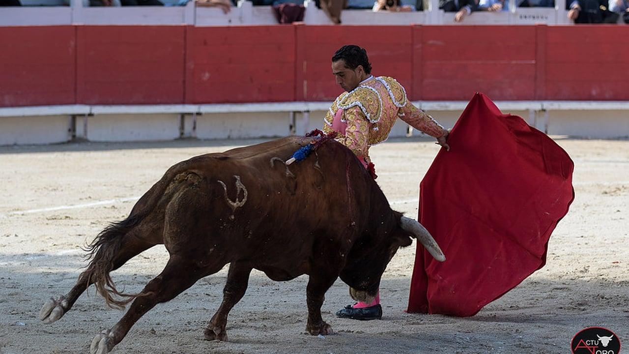 El torero Iván Fandiño, en una corrida de 2017.