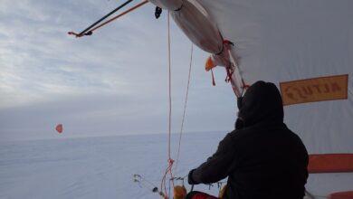 Se buscan mecenas para hacer ciencia en la Antártida