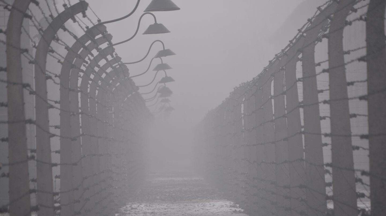 Postes y alambrada en Auschwitz.
