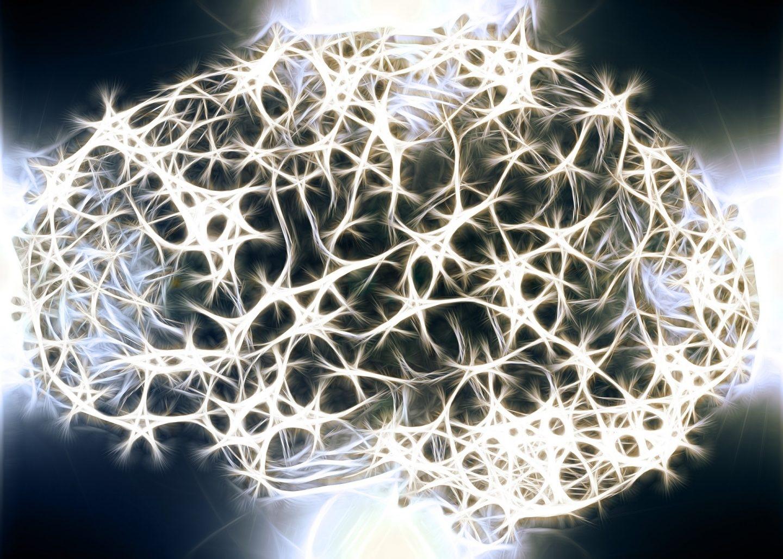 Los secretos de la Neurosabiduría