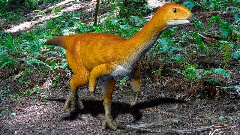 Chilesaurus, quizá el eslabón perdido de los dinosaurios.