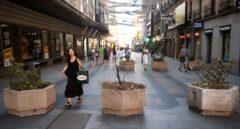 Maceteros en la calle Preciados.