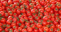 El tomate, un aliado de la cosmética natural