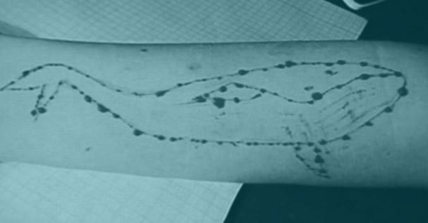 La ballena azul, uno de los retos que circula entre los jóvenes cuyo fin es el suicidio.