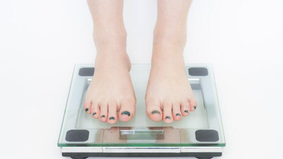 La dieta Montignac, la Sulitzer, la de la Clínica Mayo... son puestas en cuestión por los expertas nutricionistas.