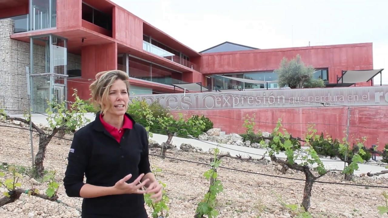 La Dra. Eva Navascués (UPM)
