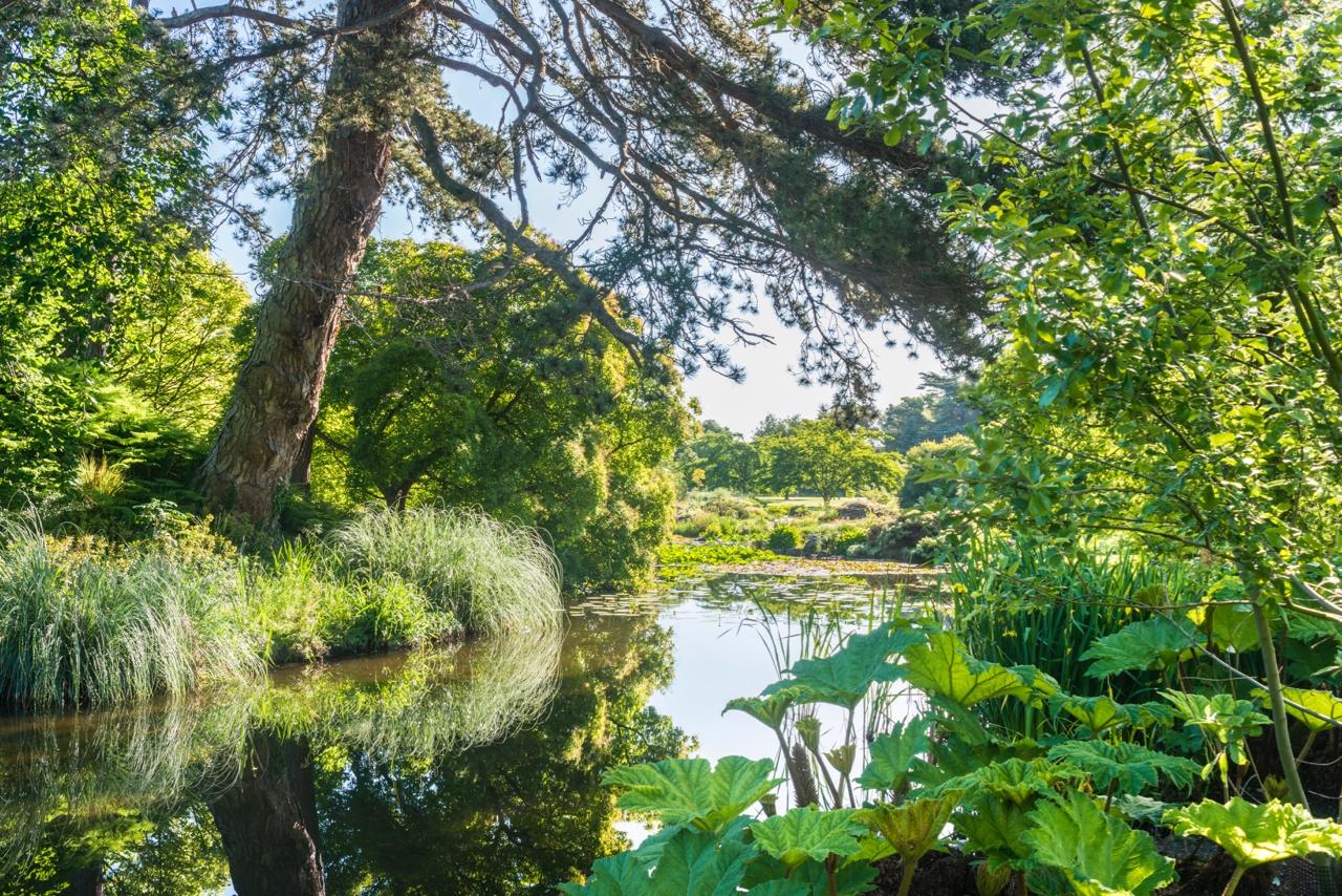 Jardín Botánico de Cambridge