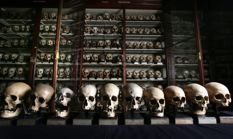 Cráneos Foto: David Cheskin