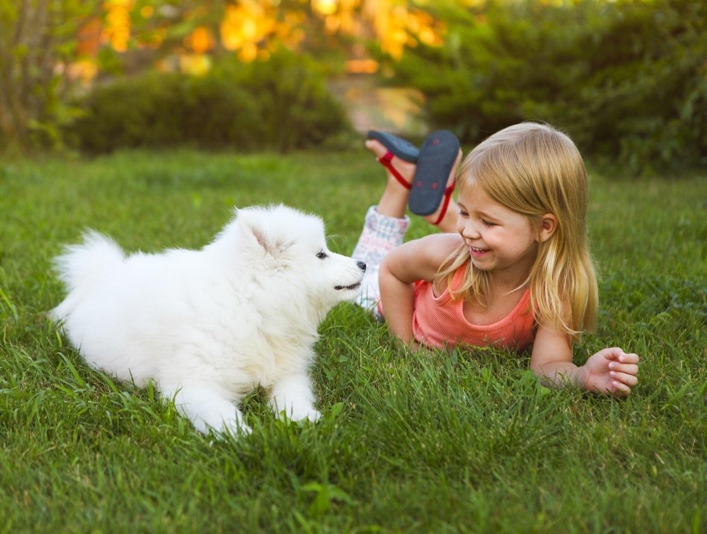 Un perro en compañía de una niña