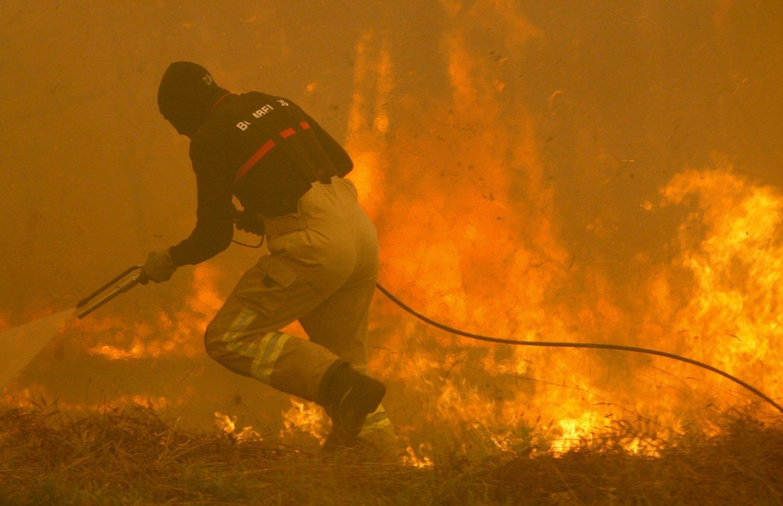 Incendio en Galicia: fuego en los alrededores de Vigo.