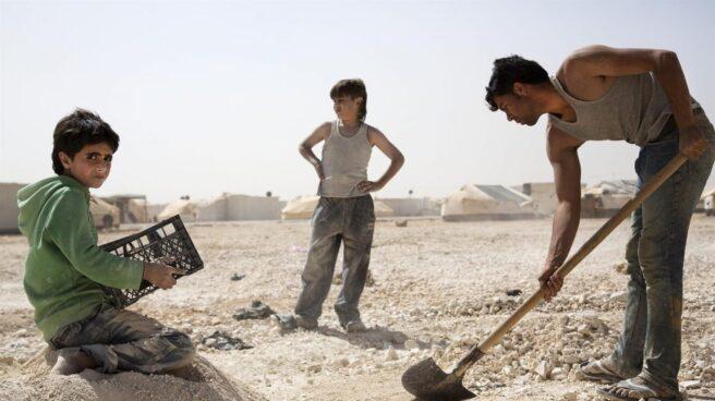 Uno de cada 10 niños del mundo es obligado a trabajar, según la OIT.