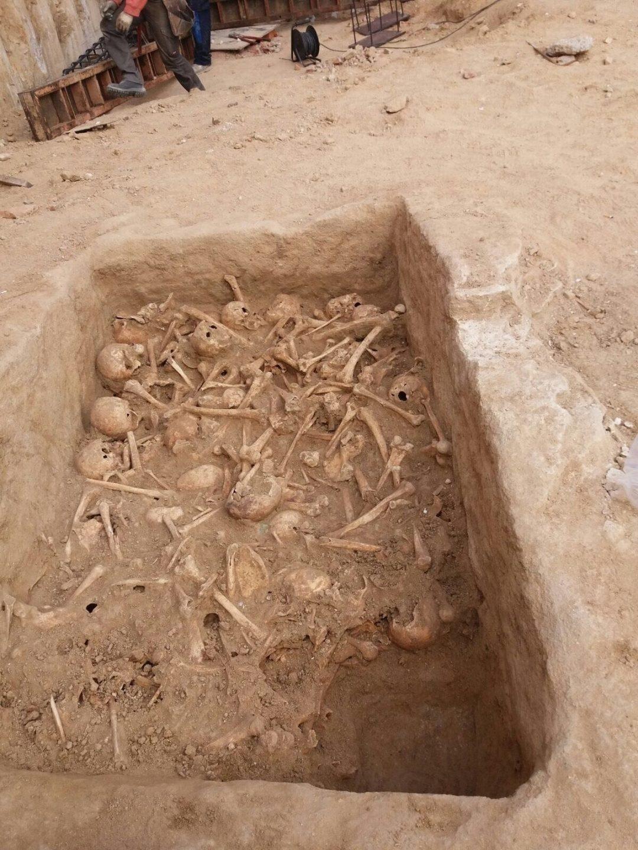 Fotografía de los cráneos hallados en Atocha.