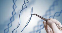 Recreación artística de la edición del ADN en el laboratorio