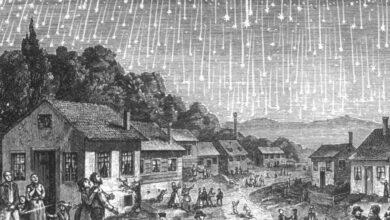 Cómo ver las Leónidas, la lluvia de estrellas fugaces más espectacular del otoño