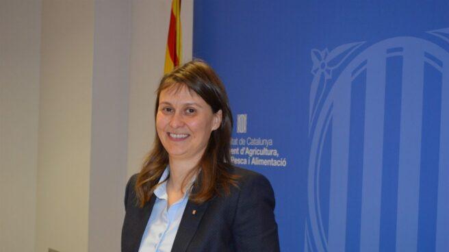 La ex conseller Meritxel Serret.