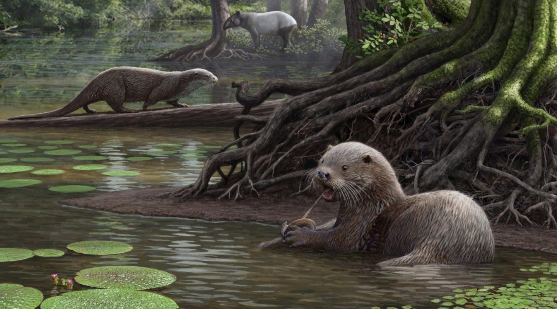 Nutria gigante prehistórica