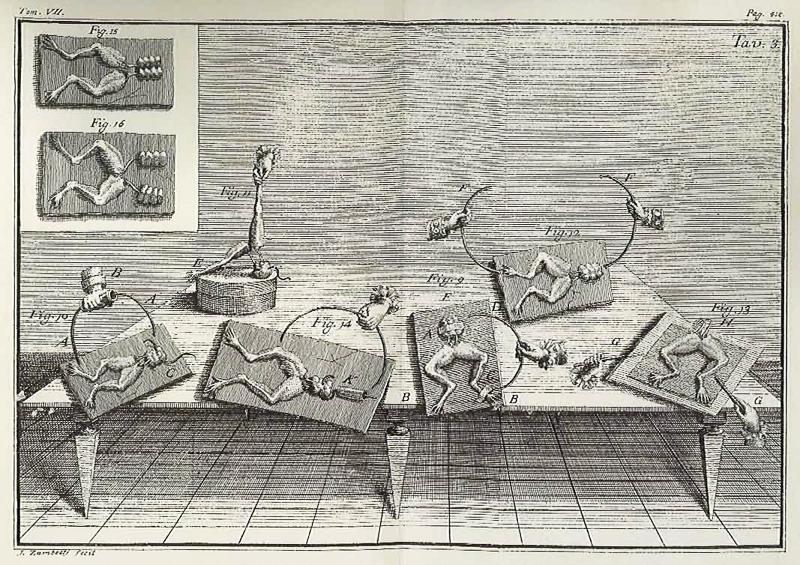 Experimentos galvánicos en que se basó Shelley para su Frankenstein