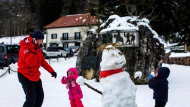 Navidad junto a la estufa: un frente frío bajará las temperaturas desde este miércoles