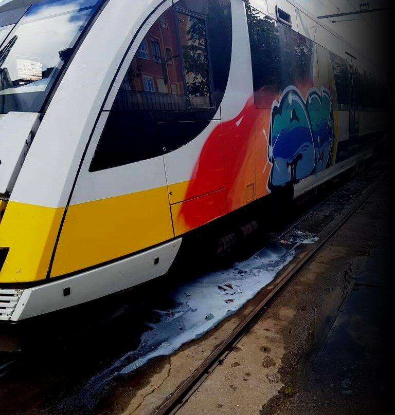 Grafitis en los trenes, un problema para la salud.