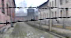 El mensaje de Auschwitz Memorial a David Torres por comparar los campos de concentración con el PP en Madrid
