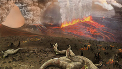 Los volcanes, también responsables de la extinción de los dinosaurios