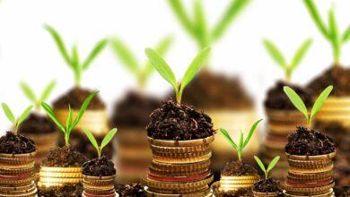 La inversión socialmente responsable ha venido para quedarse tras el Covid