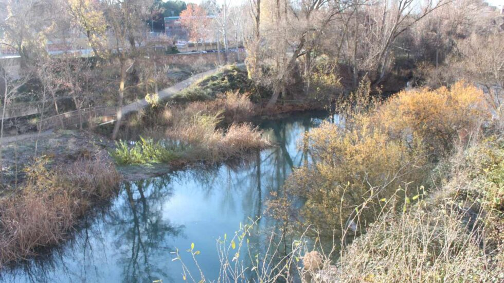 Presencia de plaguicidas en los ríos españoles: sustancias prohibidas y disruptores endocrinos.