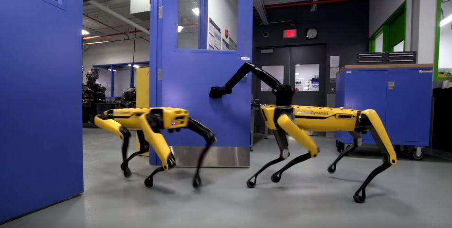 Dos ejemplares del robot SpotMini se coordinan para abrir una puerta y escapar de una sala cerrada.