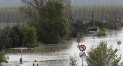 Desbordamiento del río Ebro en las cercanías de Tudela (Navarra).